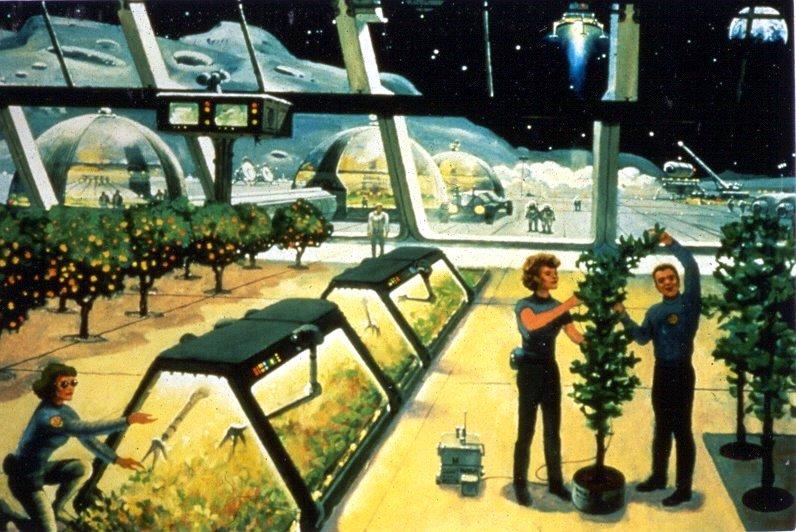 Lunar farm